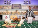 Hut-One! Hut-Two! Baroooooo! Puppy Bowl Lineup Announced