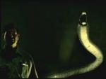 Vuka - 'Dangerous Snakes'