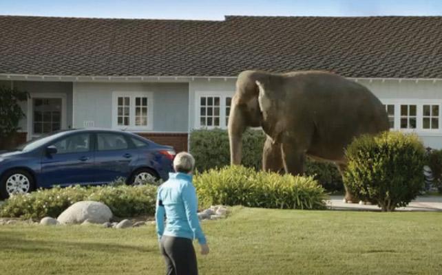 U K Based Elephant Insurance Makes Play For For U S Market News Adage
