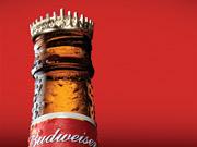 Brazilian Takeover Bid Imperils Bud Brand