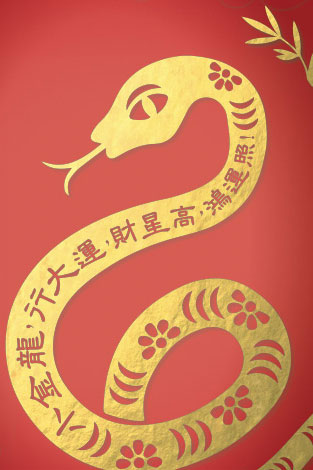 All Hail the Year of the Snake!