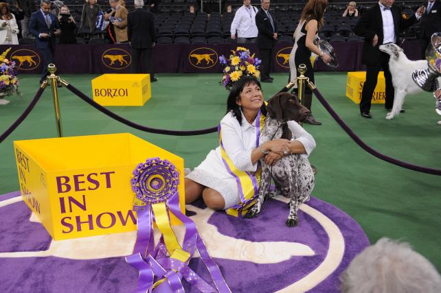 The Westminster Kennel Club Dog Show.