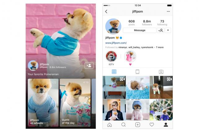 Famed Pomeranian Jiffpom can now share videos up to an hour long on IGTV.