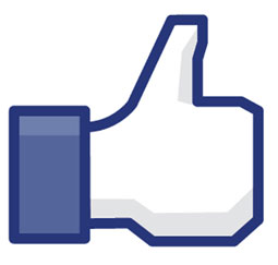 Digital Marketing Guide: How Do I Get People to Like My Brand on Facebook?