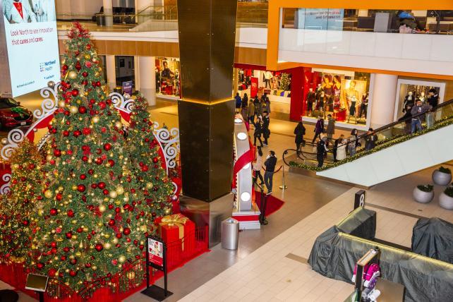 Shock drop in U.S. retail sales draws skepticism over data