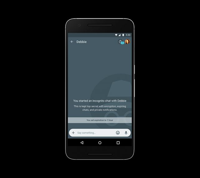 Users can start an 'incognito chat' that Google has no way of accessing.