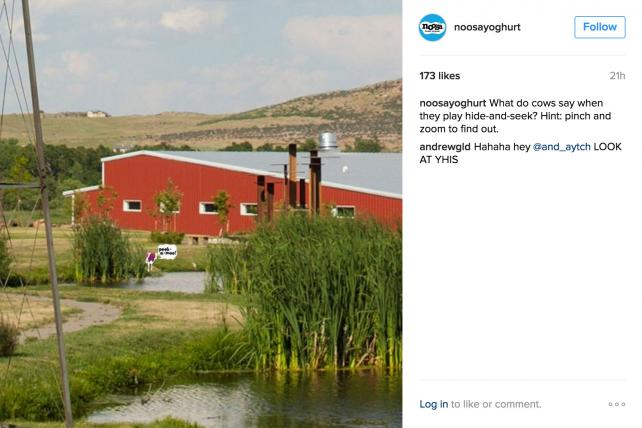 Utilizing Instagram's new zooming feature, Noosa Yoghurt encourages followers to zoom in to see what their cows are saying.