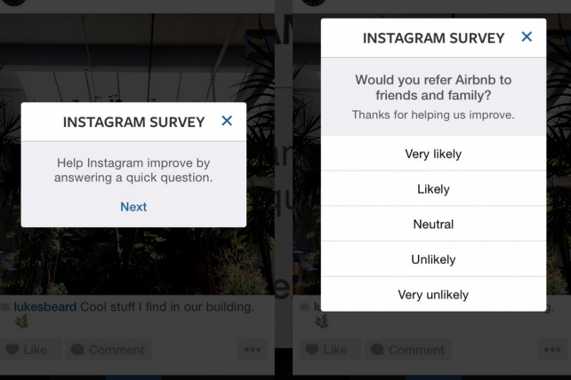 Screenshots of Instagram asking Tumblr user Luke Beard for his take on Airbnb.
