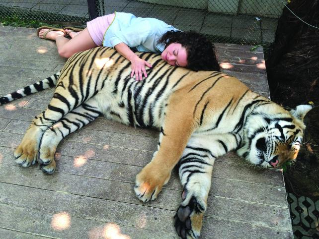 Firstborn office director Lauren Ramsey used her time to nap with tigers and bathe with elephants.
