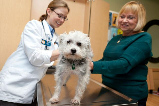 Mars-owned Banifield Pet Hospitals have more than 900 locations and 3,200 veterinarians.