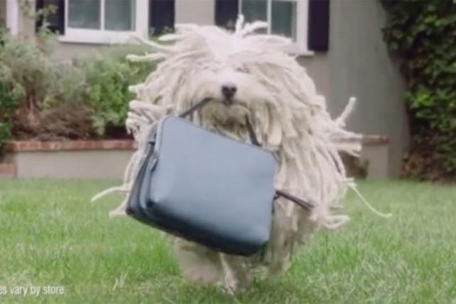 Watch the Newest Ads on TV From Audi, State Farm, Marshalls and More