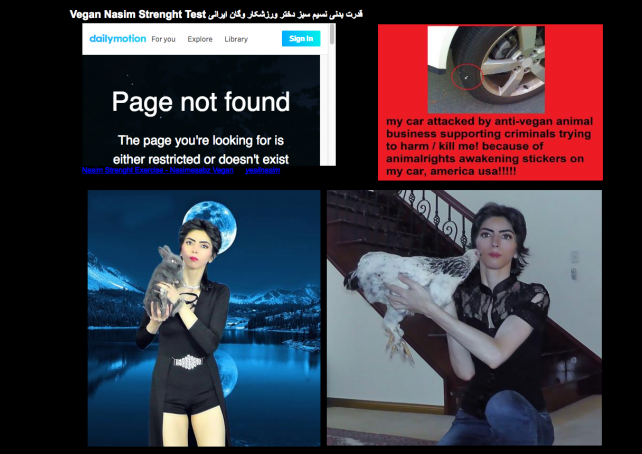 A site that appears to belong to YouTube shooter Nasim Aghdam.