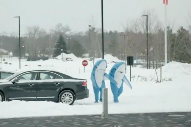 In 2015, Wieden brought the sharks that danced alongside Katy Perry during the Super Bowl halftime show to the ESPN office to have fun with staffers.