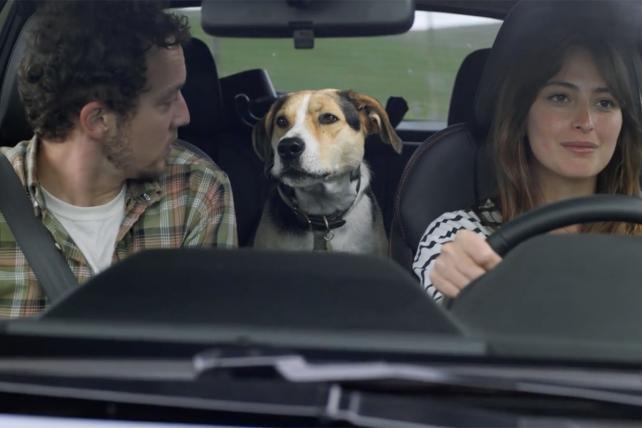 NFL-Averse, Dog-Friendly Ad Strategy Powers Subaru Surge