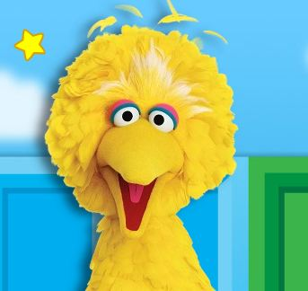 Obama Camp Releases Big Bird Video; Sesame Workshop Says 'Take It Down'