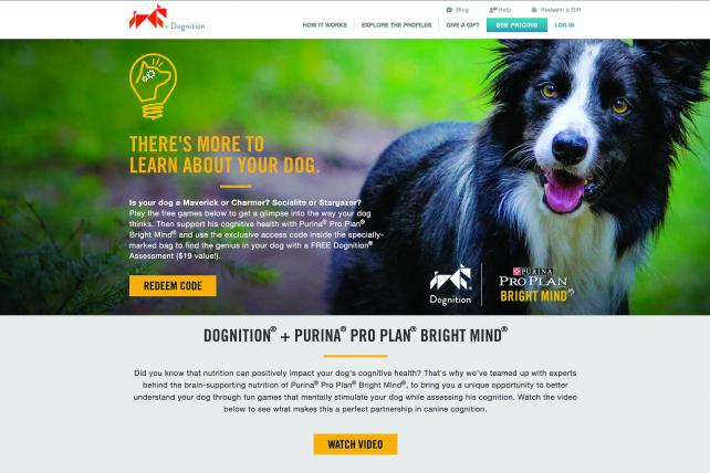 Old Category Learns New Tricks as Purina Markets Kibble to Reverse Cognitive Decline