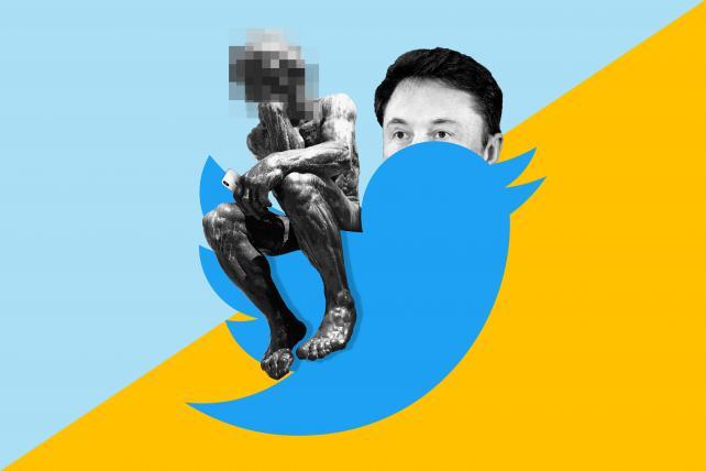Elon Musk's Twitter sitter has one wild and crazy job