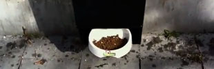 GranataPet: Snack Check -- Best of 2011 PD/OOH #5