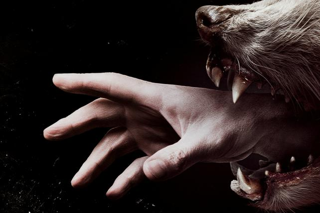 Promotional art for 'Hemlock Grove,' one of Netflix's original series.