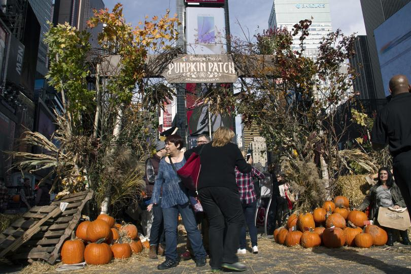 Google's Pumpkin Patch at Times Square. A fall festival in the middle of New York to promote Google Photos