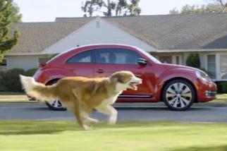 Volkwagen - The Dog Strikes Back