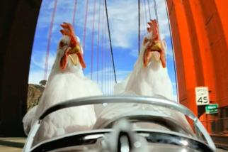 Denny's - Chickens Across America