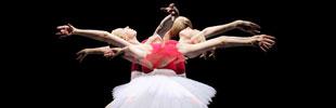360 Project Ballerina 360