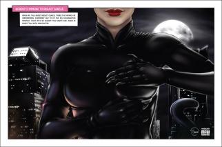 ALCC Catwoman