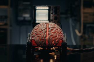 Coca-Cola (Japan) Georgia Shaki-n! Drive your Brain!