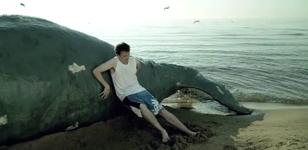 Comcast Whale