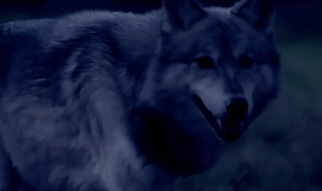 Eristoff Vodka Howl With A Wolf