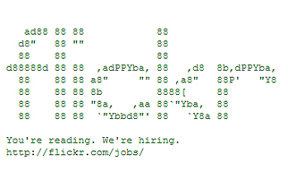 Flickr Coder Recruitment