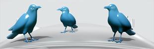 France 24 Birds
