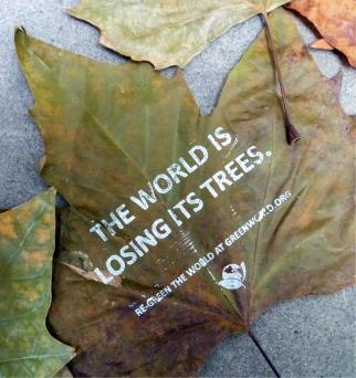 Greenworld Leaf