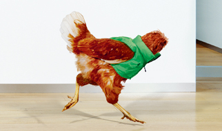 Harvey Nichols Headless Chicken