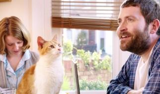 MoneySupermarket.com Running With Cats