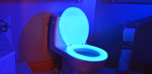 Night Glow Glow in the Dark Toilet Seats 1