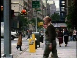 New York Post Monkey