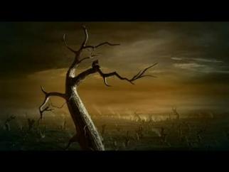 Quercus Global Warming