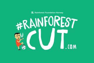 Rainforest Foundation Norway Rainforest Cut