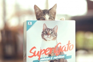 Supergato Cat Box Packaging