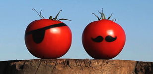 Tomato Romp Disguise