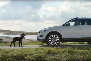 Volkswagen Born Confident