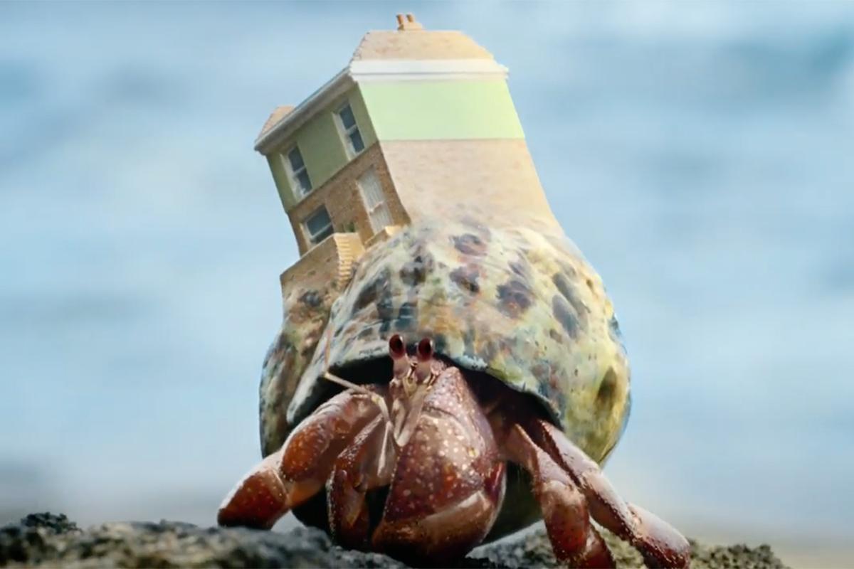 Zoopla Crab World